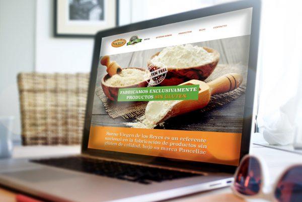 diseño-página-web-corporativa-panceliac